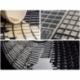 Guminiai kilimėliai DAF XF 95 1997-2006